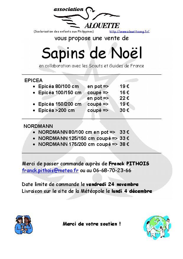 Prix des sapin noel - Location sapin de noel ...